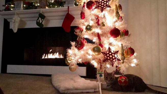 holiday-decorating-3